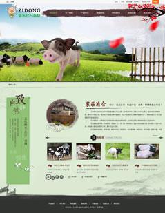 天台紫东香猪专业合作社